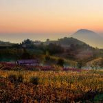 Euganeische Hügel: Weine, Quellen und antike Pfade im wunderschönen Italien