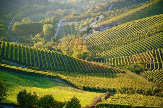 piemonte-landscape