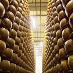 Italienischer Käse: Parmesan gegen Grana Padano