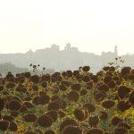 """Entdecken Sie Italien """"langsamen Schrittes"""""""